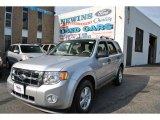 2012 Ingot Silver Metallic Ford Escape XLT V6 #72766708