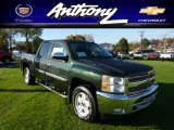 2013 Fairway Metallic Chevrolet Silverado 1500 LT Crew Cab 4x4 #72766857