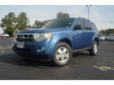 2010 Steel Blue Metallic Ford Escape XLT #72766562