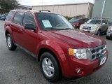 2009 Sangria Red Metallic Ford Escape XLT #72826688