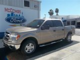 2013 Pale Adobe Metallic Ford F150 XLT SuperCrew #72826641