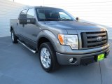 2010 Sterling Grey Metallic Ford F150 FX4 SuperCrew 4x4 #72867890