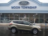 2013 Ginger Ale Metallic Ford Escape SEL 1.6L EcoBoost 4WD #72867862