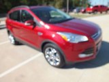 2013 Ruby Red Metallic Ford Escape SEL 1.6L EcoBoost #72903003