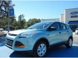 2013 Frosted Glass Metallic Ford Escape S #72902562