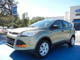 2013 Ginger Ale Metallic Ford Escape S #72902558