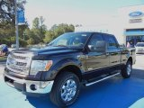2013 Kodiak Brown Metallic Ford F150 XLT SuperCrew 4x4 #72902549
