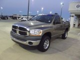 2006 Light Khaki Metallic Dodge Ram 1500 ST Regular Cab #72902779
