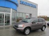 2009 Urban Titanium Metallic Honda CR-V EX 4WD #72945505