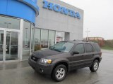 2006 Dark Shadow Grey Metallic Ford Escape XLT V6 4WD #72945501