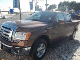 2012 Golden Bronze Metallic Ford F150 XLT SuperCrew #72991550