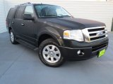 2010 Tuxedo Black Ford Expedition XLT #72991771