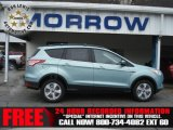 2013 Frosted Glass Metallic Ford Escape SE 2.0L EcoBoost 4WD #72991566