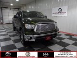2012 Spruce Green Mica Toyota Tundra Texas Edition Double Cab #73054190