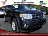 2009 Black Pearl Slate Metallic Ford Escape XLT #73054773