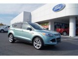 2013 Frosted Glass Metallic Ford Escape Titanium 2.0L EcoBoost #73054383