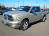 Light Graystone Pearl Dodge Ram 1500 in 2010
