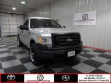 2010 Ingot Silver Metallic Ford F150 XL Regular Cab #73135664