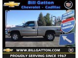 2002 Light Pewter Metallic Chevrolet Silverado 1500 LS Regular Cab 4x4 #73142913
