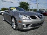 2006 Mercedes-Benz SLK Pewter Metallic