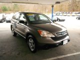 2009 Urban Titanium Metallic Honda CR-V LX 4WD #73233548