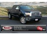 2013 Black Toyota Tundra Platinum CrewMax 4x4 #73233102