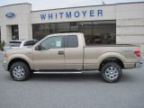 2013 Pale Adobe Metallic Ford F150 XLT SuperCab 4x4 #73233597