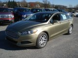 2013 Ford Fusion Ginger Ale Metallic