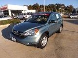 2010 Opal Sage Metallic Honda CR-V LX #73289157