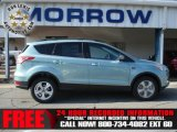 2013 Frosted Glass Metallic Ford Escape SE 1.6L EcoBoost 4WD #73288896