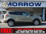 2013 Ginger Ale Metallic Ford Escape SE 2.0L EcoBoost 4WD #73288895