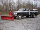 2002 Dodge Ram 3500 SLT Regular Cab 4x4 Dually Plow Truck Data, Info and Specs