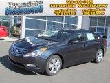 2013 Pacific Blue Pearl Hyundai Sonata Limited #73288647