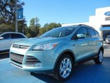 2013 Frosted Glass Metallic Ford Escape SE 1.6L EcoBoost #73288888