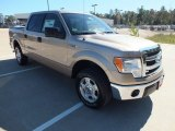 2013 Pale Adobe Metallic Ford F150 XLT SuperCrew #73289416
