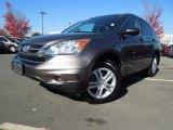2010 Urban Titanium Metallic Honda CR-V EX #73347988