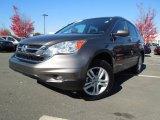 2010 Urban Titanium Metallic Honda CR-V EX-L #73347986