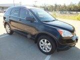 2009 Crystal Black Pearl Honda CR-V EX-L #73348179