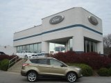 2013 Ginger Ale Metallic Ford Escape Titanium 2.0L EcoBoost 4WD #73347562