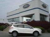 2013 White Platinum Metallic Tri-Coat Ford Escape SEL 2.0L EcoBoost 4WD #73347560