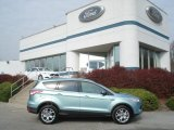 2013 Frosted Glass Metallic Ford Escape SEL 1.6L EcoBoost 4WD #73347558