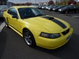 2003 Zinc Yellow Ford Mustang Mach 1 Coupe #73434968