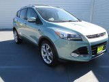 2013 Frosted Glass Metallic Ford Escape Titanium 2.0L EcoBoost #73440657