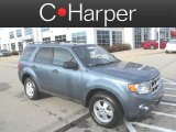 2010 Steel Blue Metallic Ford Escape XLT 4WD #73484478