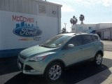 2013 Frosted Glass Metallic Ford Escape SE 1.6L EcoBoost #73484597