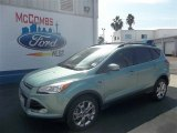 2013 Frosted Glass Metallic Ford Escape SEL 2.0L EcoBoost #73484590