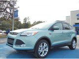 2013 Frosted Glass Metallic Ford Escape SE 1.6L EcoBoost #73538588