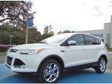 2013 White Platinum Metallic Tri-Coat Ford Escape SEL 1.6L EcoBoost #73538567