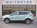 2013 Frosted Glass Metallic Ford Escape SEL 1.6L EcoBoost 4WD #73581588