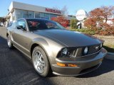 2005 Mineral Grey Metallic Ford Mustang GT Deluxe Coupe #73581248